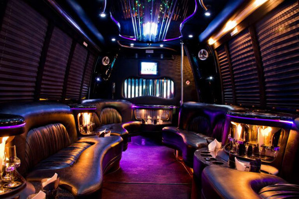 15 Person Party Bus Rental Washington DC